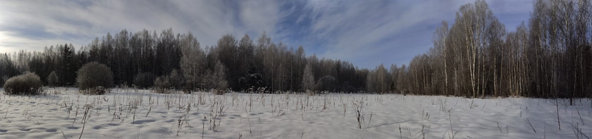 Живая природа Калужской области